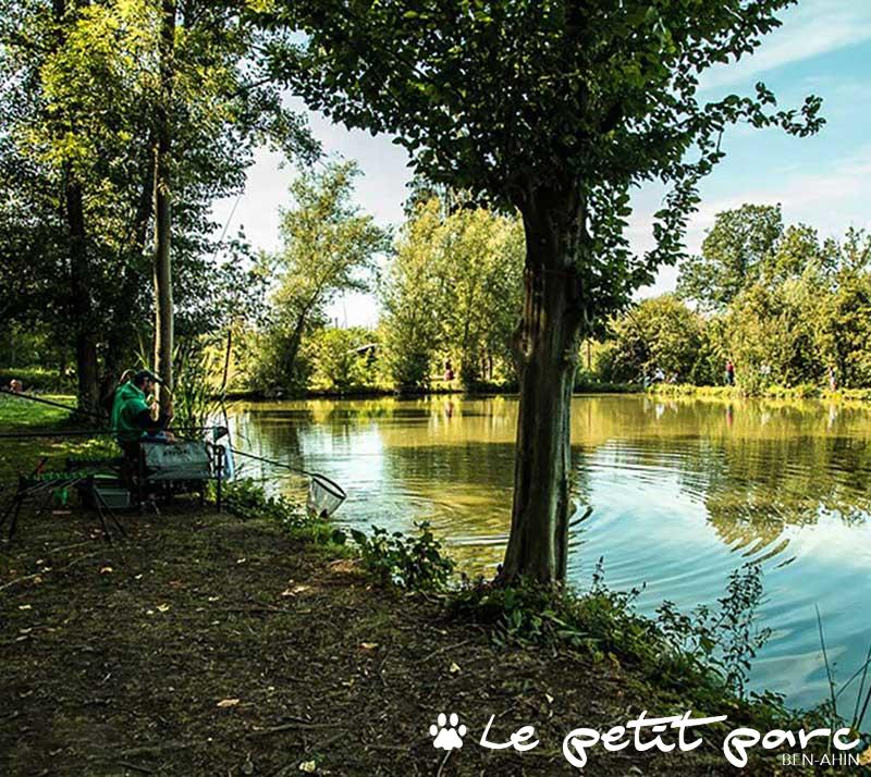Etangs de pêche au blanc et carpodrome du Petit Parc de Ben-Ahin